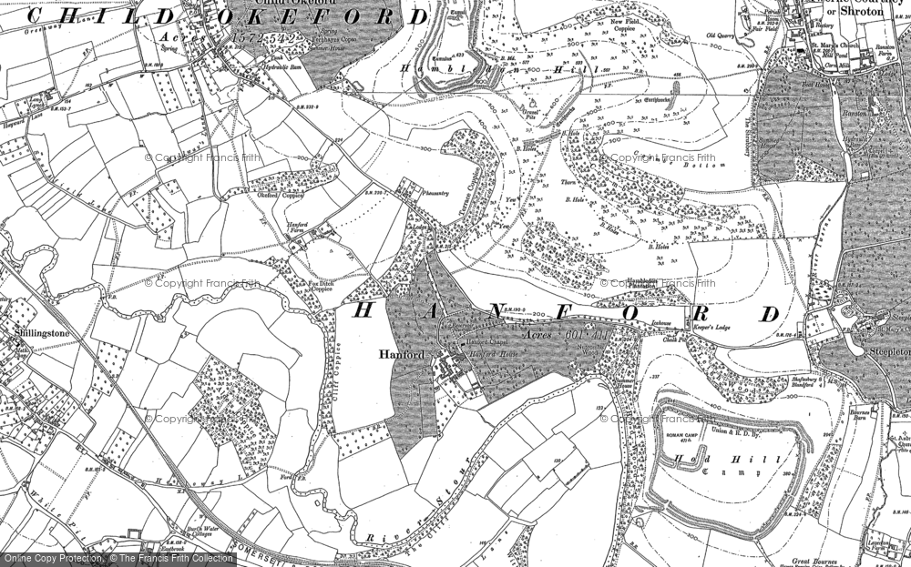 Old Map of Historic Map covering Alders Coppice in 1886