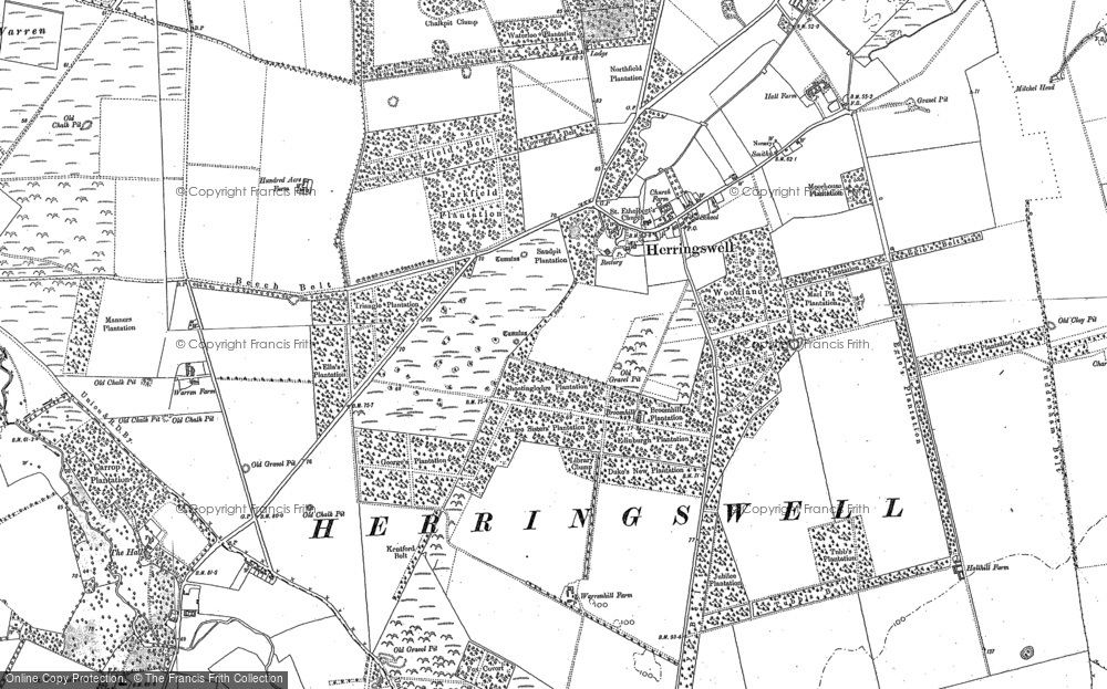 Old Map of Historic Map covering Woodlands in 1881