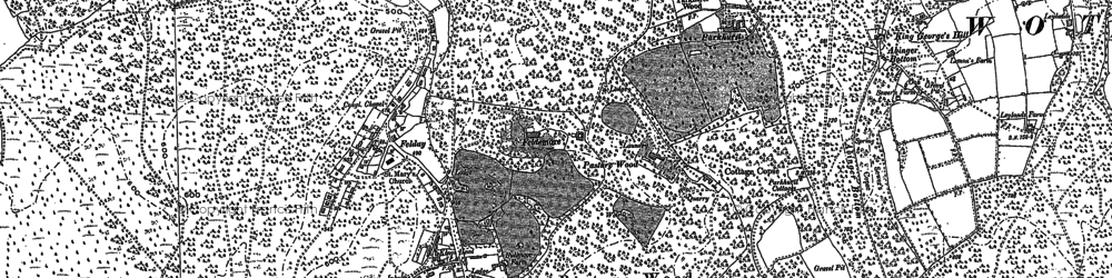Old map of Holmbury St Mary in 1895