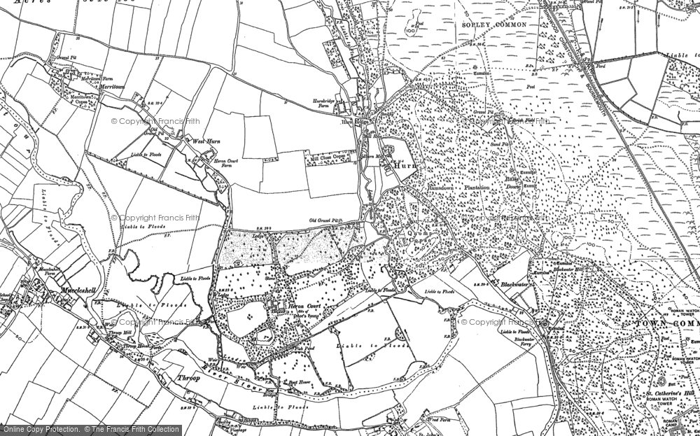 Old Map of Historic Map covering Avon Common in 1907