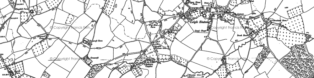 Old map of Leigh Sinton in 1884