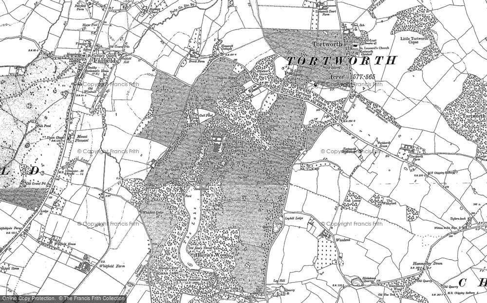 Old Map of Leyhill, 1880 - 1881 in 1880