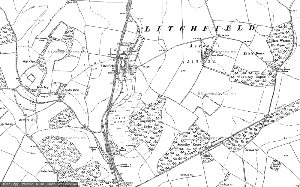 Old Map of Historic Map covering Wormley Copse in 1894