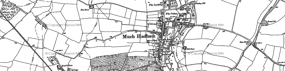Old map of Much Hadham in 1896