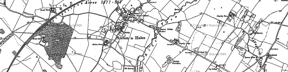 Old map of Norton in Hales in 1879