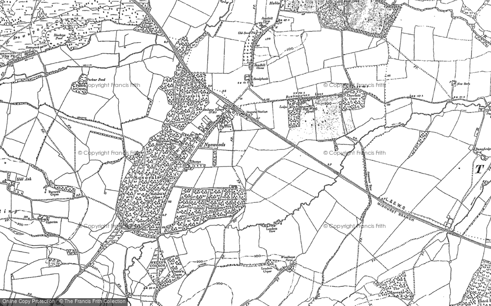Old Map of Nyewood, 1896 - 1910 in 1896