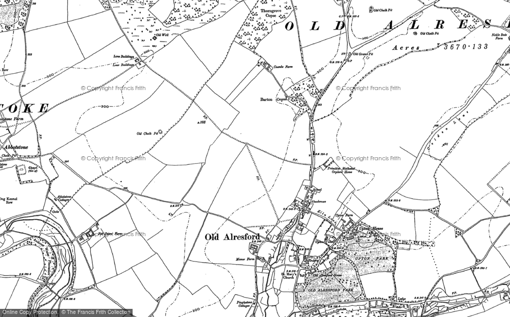 Old Map of Historic Map covering Abbotstone Woods in 1894