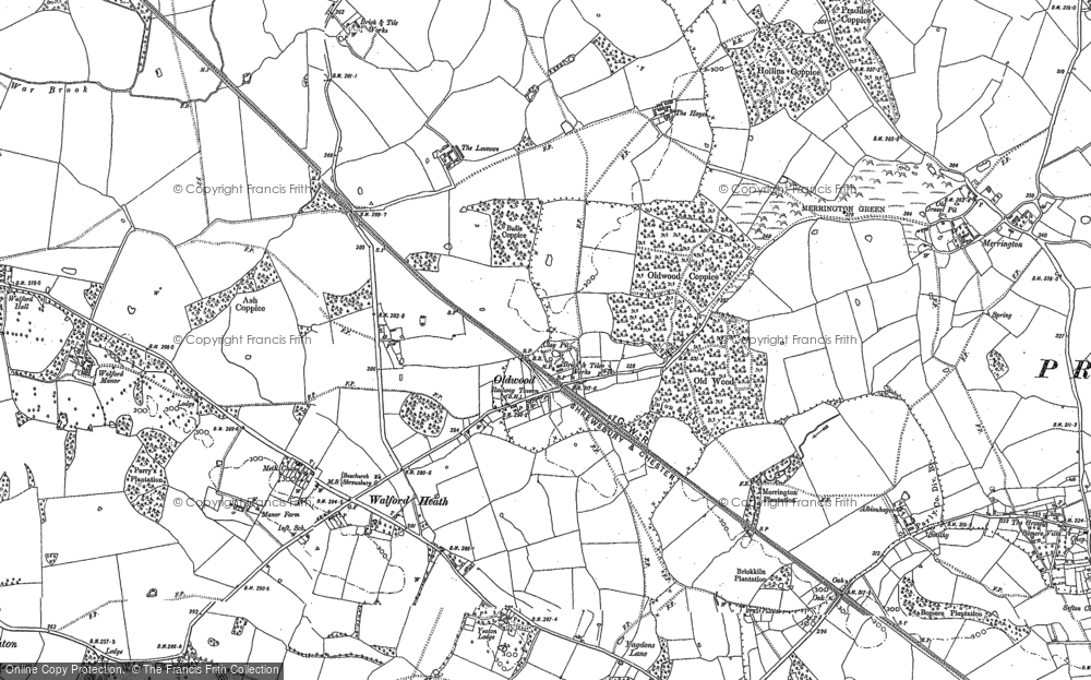 Old Map of Old Woods, 1880 - 1881 in 1880