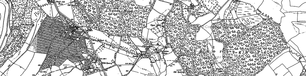 Old map of Yatton Wood in 1887