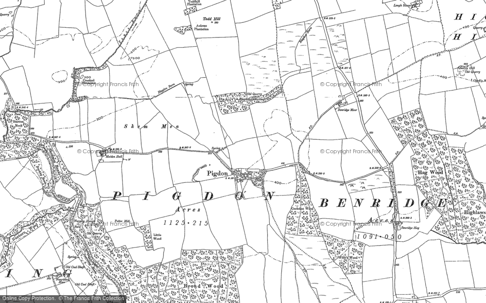 Old Map of Historic Map covering Todd Hill in 1896