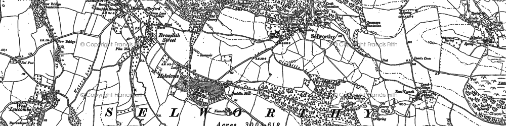 Old map of Selworthy in 1902