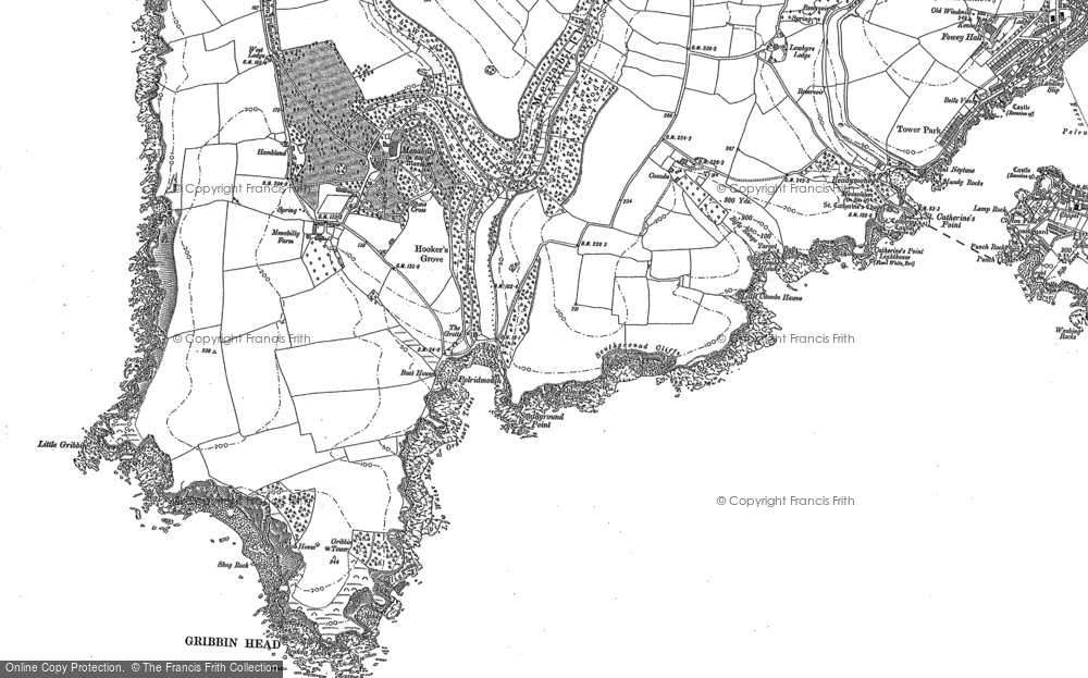 Old Map of Historic Map covering Pridmouth in 1906