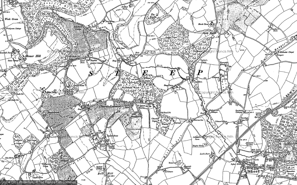 Old Map of Historic Map covering Ashford Chace in 1895