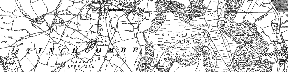 Old map of Stinchcombe in 1882