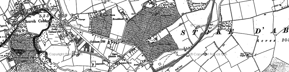 Old map of Stoke D' Abernon in 1894