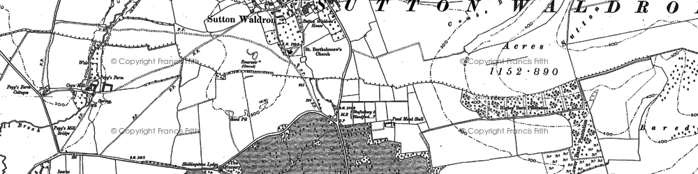 Old map of Sutton Waldron in 1886