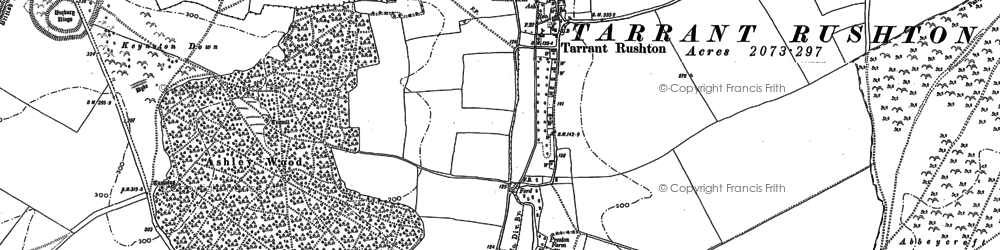 Old map of Abbeycroft Down in 1887