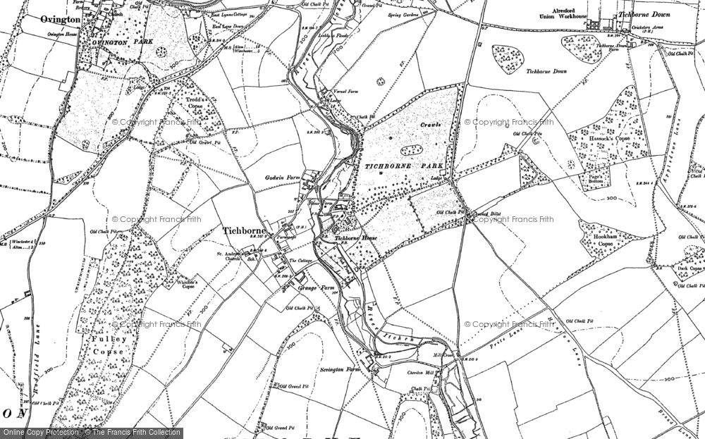 Old Map of Historic Map covering Tichborne Park in 1895