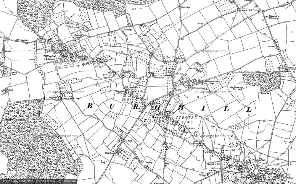 Old Map of Historic Map covering Badnage Wood in 1886