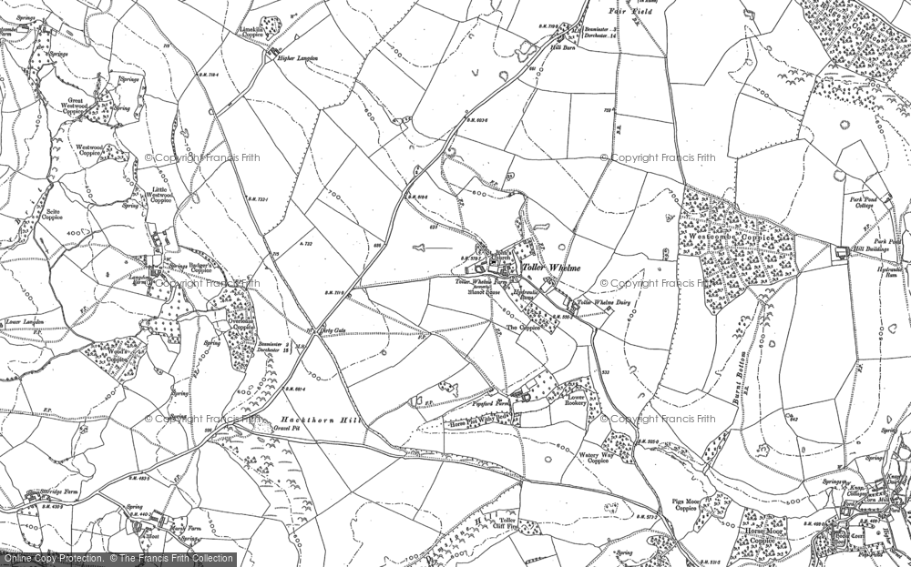 Old Map of Toller Whelme, 1886 in 1886