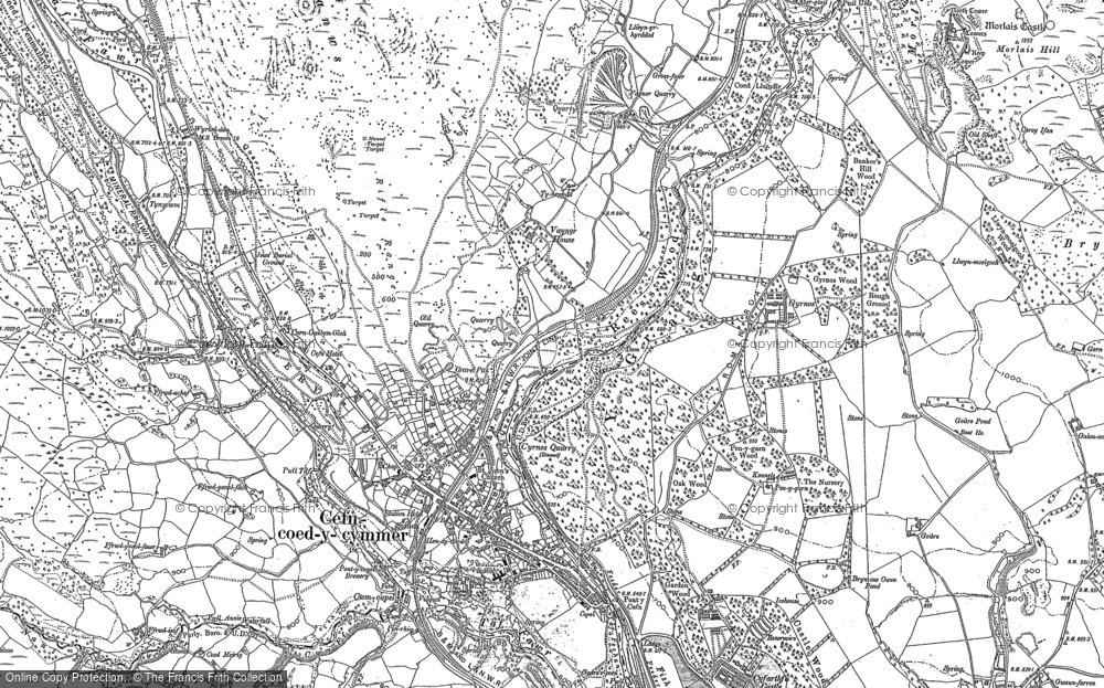 Old Map of Historic Map covering Afon Taf Fawr in 1884