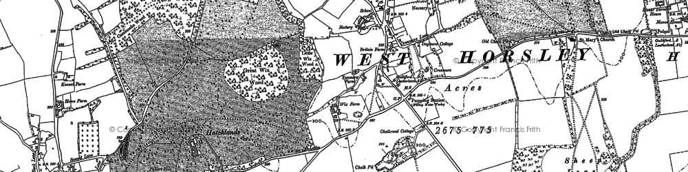 Old map of Woodcote Lodge in 1895