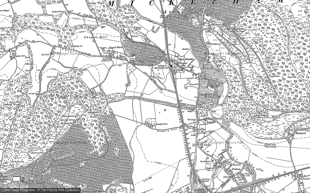 Old Map of Historic Map covering Ashcombe Wood in 1894