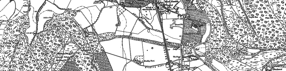 Old map of Ashcombe Wood in 1894
