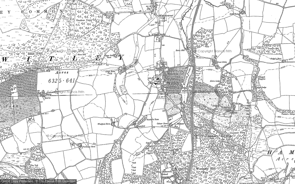 Witley, 1870 - 1896
