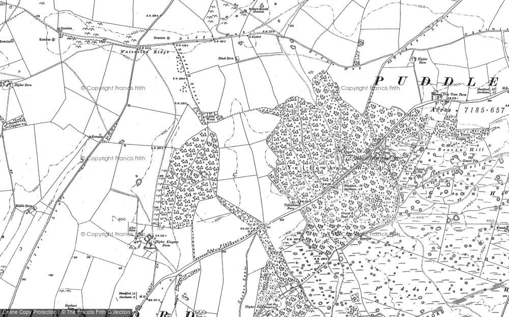 Yellowham Wood, 1887