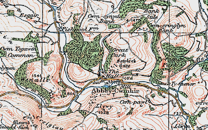 Old map of Abbeycwmhir in 1922