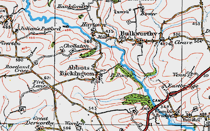 Old map of Abbots Bickington in 1919