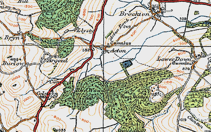 Old map of Acton in 1920