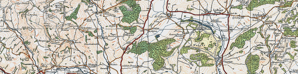 Old map of Withins Wood in 1920