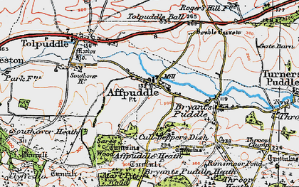 Old map of Affpuddle in 1919