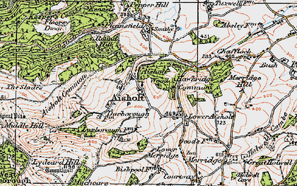 Old map of Aisholt in 1919