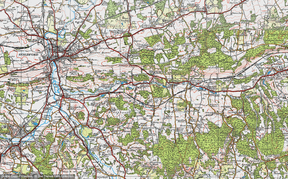 Old Map of Historic Map covering Albury Park in 1920