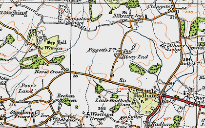Old map of Albury End in 1919