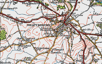 Old map of Alcester in 1919