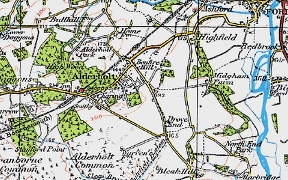 Old map of Alderholt in 1919