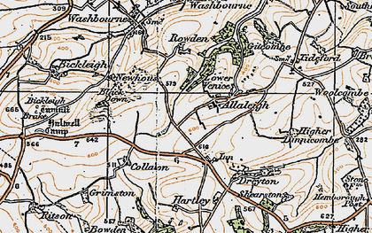 Old map of Allaleigh in 1919