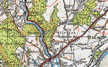 Old map of Allaston in 1919
