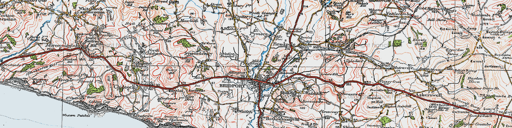 Old map of Allington in 1919