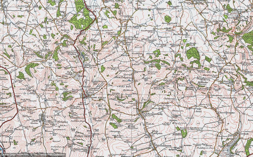 Old Map of Alton Pancras, 1919 in 1919