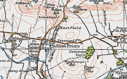 Old map of Alton Priors in 1919