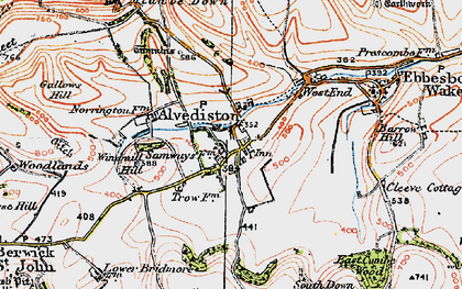 Old map of Alvediston in 1919