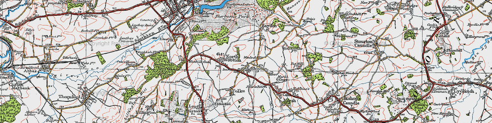 Old map of Alweston in 1919