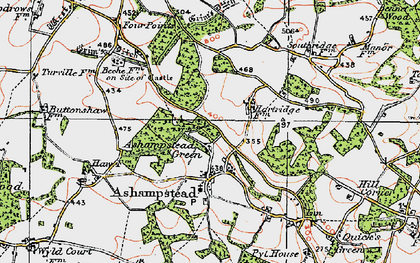 Old map of Ashampstead Green in 1919