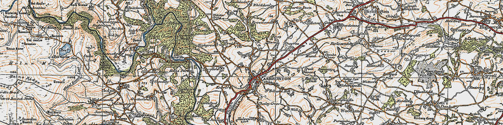 Old map of Ashburton in 1919