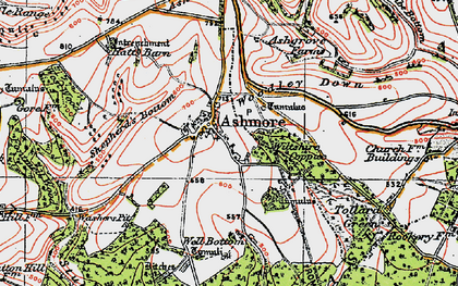Old map of Ashmore Down in 1919